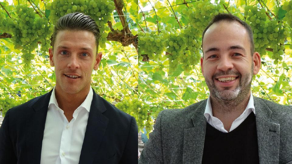 Westland Adviesgroep groeit door