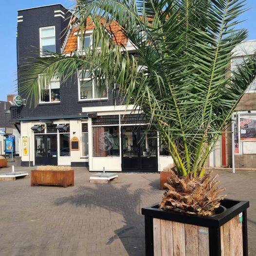 Regio nieuws: Naaldwijk