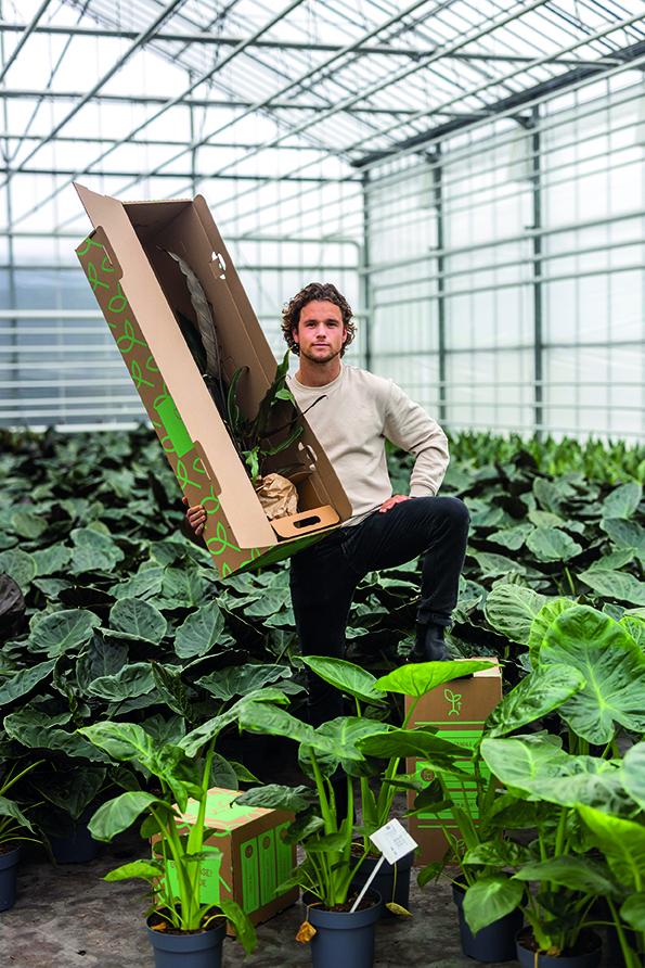 'Click-pax biedt innovatie in plantenverpakkingen'